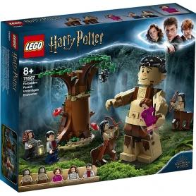 LEGO Harry potter La foresta proibita: l'incontro con la umbridge