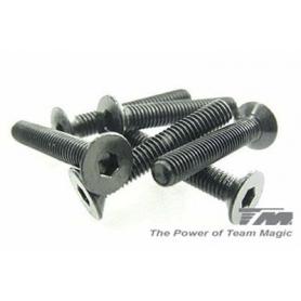 3x18mm steel fh screw (6)